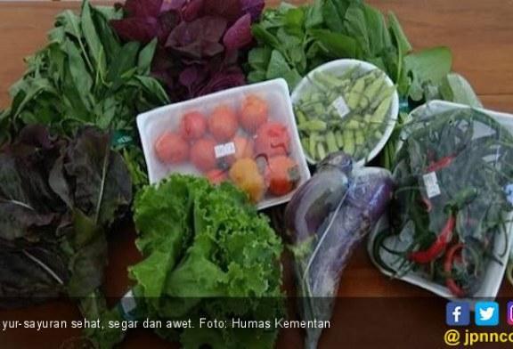 6 Makanan Pencegah Anemia