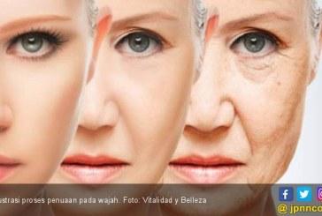 Diet Ini Bisa Menangkal Beberapa Efek Penuaan yang Berbahaya