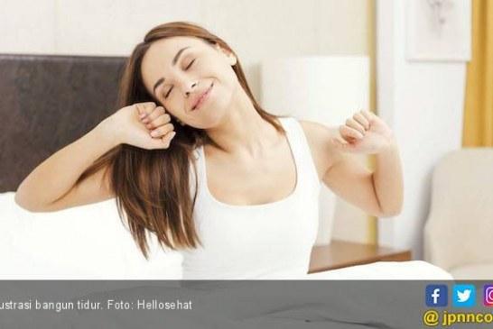 6 Manfaat Tidur Siang yang tak Boleh Anda Lewatkan